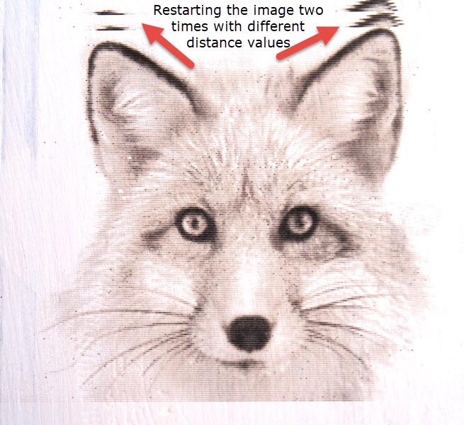 Fox Good